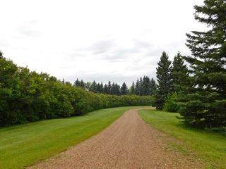 Photo 3: 56021 Rge Rd 234: Rural Sturgeon County House for sale : MLS®# E4167810
