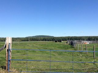 Photo 27: ON Highway 27: Rural Mountain View County Land for sale : MLS®# A1012341