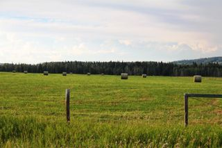 Photo 25: ON Highway 27: Rural Mountain View County Land for sale : MLS®# A1012341