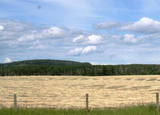 Photo 33: ON Highway 27: Rural Mountain View County Land for sale : MLS®# A1012341