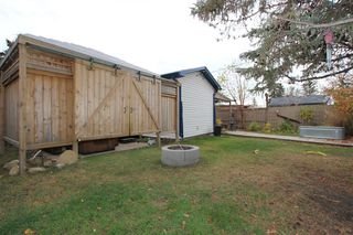 Photo 16: 7744 46 Avenue NW in Calgary: Bowness Detached for sale : MLS®# A1043313