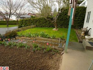 Photo 9: 35366 ROCKWELL Drive in Abbotsford: Abbotsford East House for sale : MLS®# F1109071