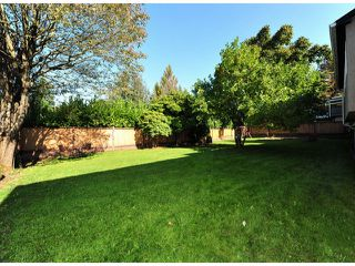 Photo 13: 32263 MARSHALL Road in Abbotsford: Abbotsford West House for sale : MLS®# F1323815