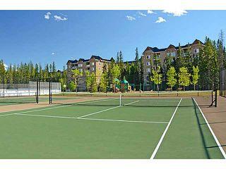 Photo 16: 539 10 DISCOVERY RIDGE Close SW in CALGARY: Discovery Ridge Condo for sale (Calgary)  : MLS®# C3596343