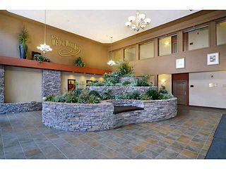 Photo 11: 539 10 DISCOVERY RIDGE Close SW in CALGARY: Discovery Ridge Condo for sale (Calgary)  : MLS®# C3596343