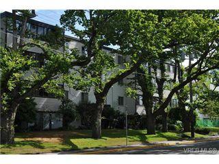 Photo 11: 206 1124 Esquimalt Rd in VICTORIA: Es Rockheights Condo Apartment for sale (Esquimalt)  : MLS®# 707599