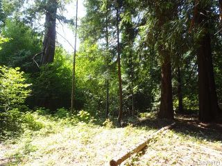 Photo 27: LT 1 W Island Hwy in QUALICUM BEACH: PQ Qualicum North Land for sale (Parksville/Qualicum)  : MLS®# 708171