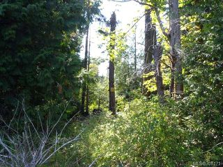 Photo 14: LT 1 W Island Hwy in QUALICUM BEACH: PQ Qualicum North Land for sale (Parksville/Qualicum)  : MLS®# 708171