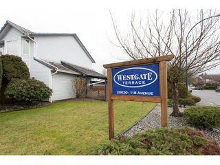 """Photo 1: 3 20630 118 Avenue in Maple Ridge: Southwest Maple Ridge Townhouse for sale in """"WESTGATE TERRACE"""" : MLS®# R2026296"""