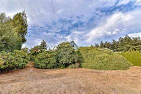 Photo 13: 15409 BUENA VISTA Avenue: White Rock House for sale (South Surrey White Rock)  : MLS®# R2129608