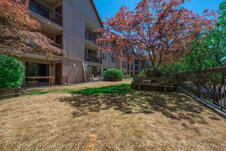 Photo 20: 136 8500 ACKROYD Road in Richmond: Brighouse Condo for sale : MLS®# R2193064