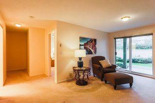 "Photo 19: 8 22740 116 Avenue in Maple Ridge: East Central Townhouse for sale in ""FRASER GLEN"" : MLS®# R2223441"