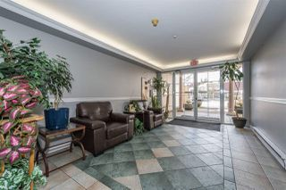 Photo 19: 102 2678 DIXON STREET in Port Coquitlam: Central Pt Coquitlam Condo for sale : MLS®# R2146295