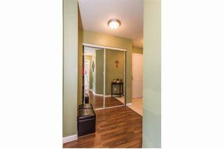 Photo 17: 102 2678 DIXON STREET in Port Coquitlam: Central Pt Coquitlam Condo for sale : MLS®# R2146295