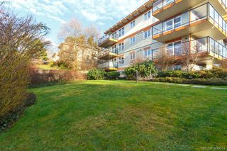 Photo 18: 205 2940 Harriet Road in VICTORIA: SW Gorge Condo Apartment for sale (Saanich West)  : MLS®# 386652