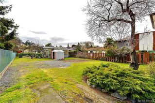 Photo 3: 135 Hampton Rd in VICTORIA: SW Gateway House for sale (Saanich West)  : MLS®# 780525