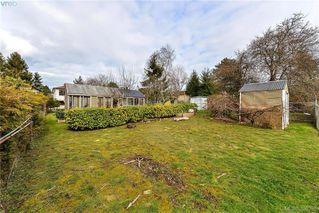 Photo 4: 135 Hampton Rd in VICTORIA: SW Gateway House for sale (Saanich West)  : MLS®# 780525