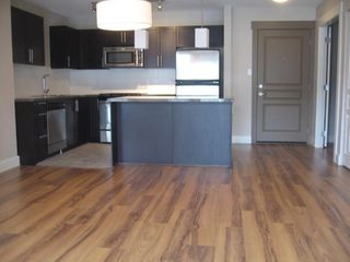 "Photo 2: 412 12283 224 Street in Maple Ridge: West Central Condo for sale in ""THE MAXX"" : MLS®# R2248915"