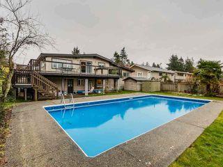 Photo 10: 4876 4 Avenue in Delta: Pebble Hill House for sale (Tsawwassen)  : MLS®# R2289394