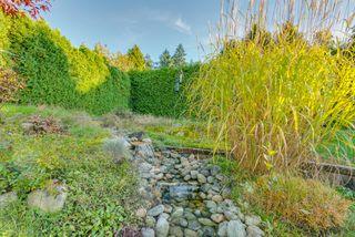 "Photo 39: 14522 29 Avenue in Surrey: Elgin Chantrell House for sale in ""ELGIN CHANTRELL"" (South Surrey White Rock)  : MLS®# R2314832"