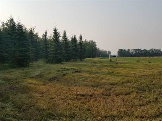 Photo 11: #43-25527- Twp Road 511A Road: Rural Parkland County Rural Land/Vacant Lot for sale : MLS®# E4138090