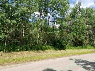 Photo 6: #43-25527- Twp Road 511A Road: Rural Parkland County Rural Land/Vacant Lot for sale : MLS®# E4138090