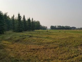 Photo 12: #43-25527- Twp Road 511A Road: Rural Parkland County Rural Land/Vacant Lot for sale : MLS®# E4138090