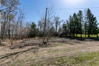Photo 28: 27408 TWP RD 552: Rural Sturgeon County House for sale : MLS®# E4153850