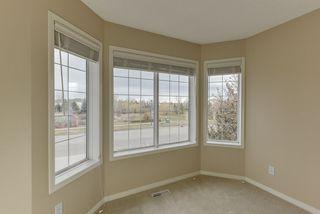 Photo 19: 2061 HADDOW Drive in Edmonton: Zone 14 House for sale : MLS®# E4178157