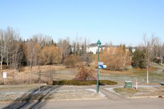Photo 21: 2061 HADDOW Drive in Edmonton: Zone 14 House for sale : MLS®# E4178157