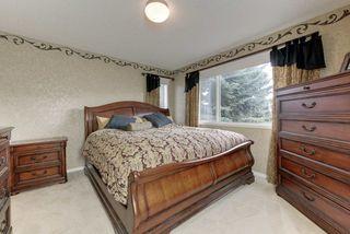 Photo 24: 2061 HADDOW Drive in Edmonton: Zone 14 House for sale : MLS®# E4178157