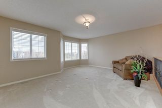 Photo 18: 2061 HADDOW Drive in Edmonton: Zone 14 House for sale : MLS®# E4178157