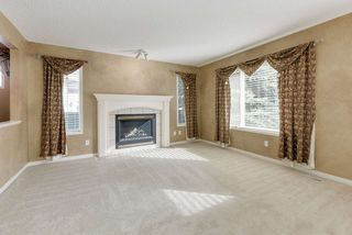 Photo 9: 2061 HADDOW Drive in Edmonton: Zone 14 House for sale : MLS®# E4178157