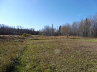 Photo 6: 53421 RGE RD 40 A: Rural Parkland County Rural Land/Vacant Lot for sale : MLS®# E4183794