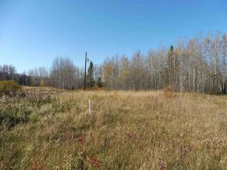 Photo 1: 53421 RGE RD 40 A: Rural Parkland County Rural Land/Vacant Lot for sale : MLS®# E4183794