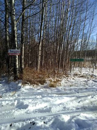 Photo 9: 53421 RGE RD 40 A: Rural Parkland County Rural Land/Vacant Lot for sale : MLS®# E4183794