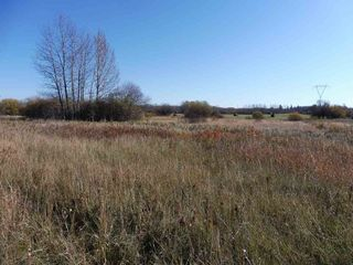 Photo 7: 53421 RGE RD 40 A: Rural Parkland County Rural Land/Vacant Lot for sale : MLS®# E4183794