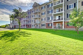 Photo 1: 2311 43 COUNTRY VILLAGE Lane NE in Calgary: Country Hills Village Apartment for sale : MLS®# C4300426