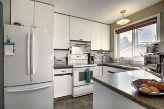 Photo 4: 1711 65 Street NE in Calgary: Pineridge Detached for sale : MLS®# A1038776