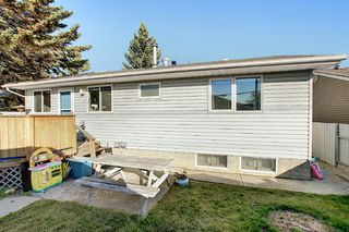 Photo 40: 1711 65 Street NE in Calgary: Pineridge Detached for sale : MLS®# A1038776