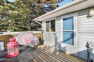 Photo 11: 1711 65 Street NE in Calgary: Pineridge Detached for sale : MLS®# A1038776