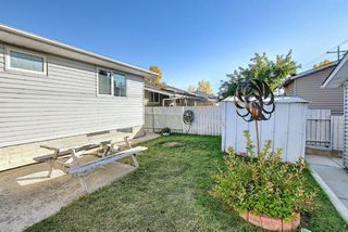 Photo 41: 1711 65 Street NE in Calgary: Pineridge Detached for sale : MLS®# A1038776