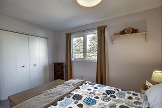 Photo 20: 1711 65 Street NE in Calgary: Pineridge Detached for sale : MLS®# A1038776