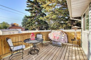 Photo 13: 1711 65 Street NE in Calgary: Pineridge Detached for sale : MLS®# A1038776