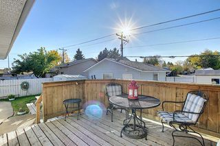 Photo 14: 1711 65 Street NE in Calgary: Pineridge Detached for sale : MLS®# A1038776