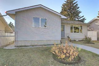 Photo 38: 1711 65 Street NE in Calgary: Pineridge Detached for sale : MLS®# A1038776