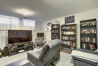 Photo 31: 1711 65 Street NE in Calgary: Pineridge Detached for sale : MLS®# A1038776