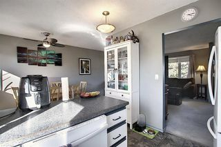 Photo 8: 1711 65 Street NE in Calgary: Pineridge Detached for sale : MLS®# A1038776