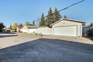 Photo 46: 1711 65 Street NE in Calgary: Pineridge Detached for sale : MLS®# A1038776
