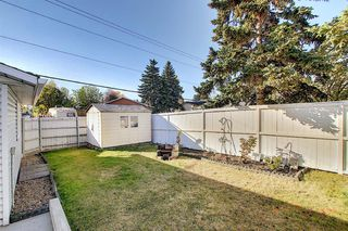 Photo 45: 1711 65 Street NE in Calgary: Pineridge Detached for sale : MLS®# A1038776